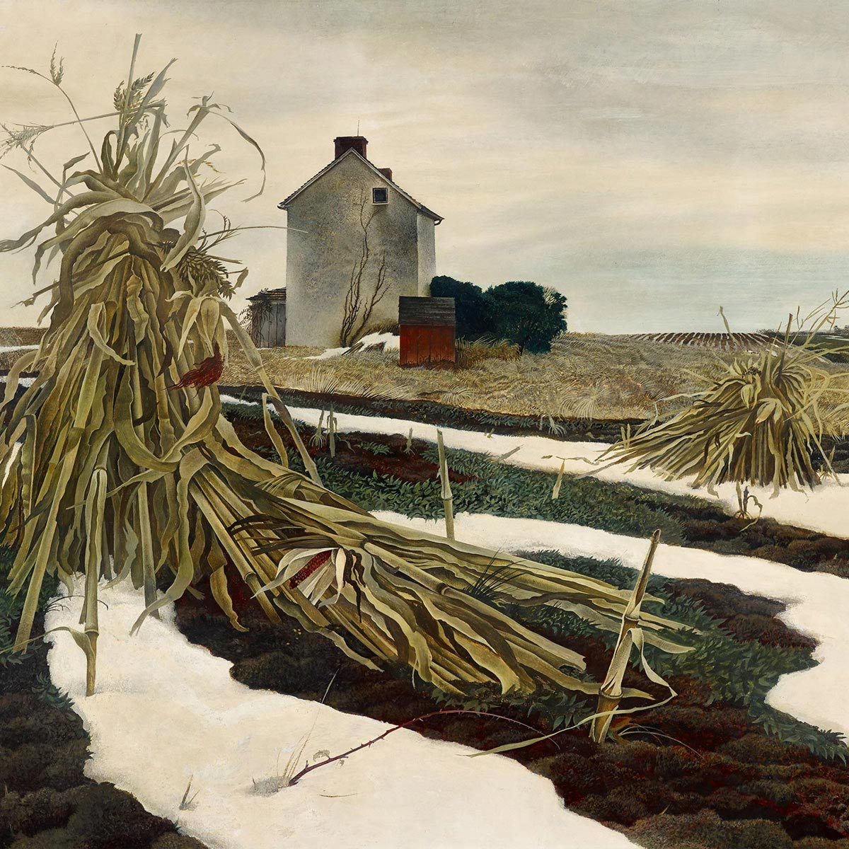 Andrew Wyeth Winter Corn Fields