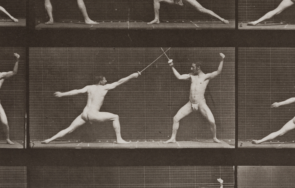 Detail from Muybridge, Eadweard. Animal Locomotion. An Electro-Photographic Investigation of Consecutive Phases of Animal Movements 1872-1885. Philadelphia, 1887. Large oblong folio, 95 collotypes. Sold at Lyon & Turnbull for  £75,000