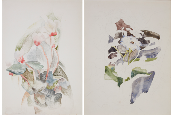 Lot 73 | Charles Demuth, Cyclamen, watercolor and pencil on paper, $70,000-100,000; Lot 74 | Charles Demuth, Zinnias, watercolor and pencil on paper, $60,000-80,000