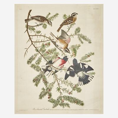 Lot 118 - [Prints] Audubon, John James