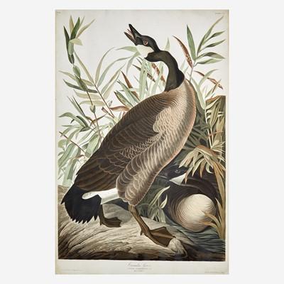 Lot 116 - [Prints] Audubon, J(ohn). J(ames).