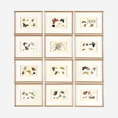 Lot 89 - A Suite of Twelve Framed Chinese Export Paintings