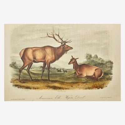 Lot 117 - [Prints] Audubon, John James, and Rev. John Bachman